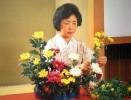 Аранжировка цветов - традиционное искусство Японии - икебана (Flower Arrangement- a japanese Art. Бумага, цветная печать. 45х58. ХФ-186, КП-1677