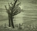 Ахунов М.Ф. Старый дуб. Из серии