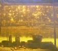 Дергун С. К.На реке Сим.1985.Х.,м.,100х118. КП-8072, Ж-484